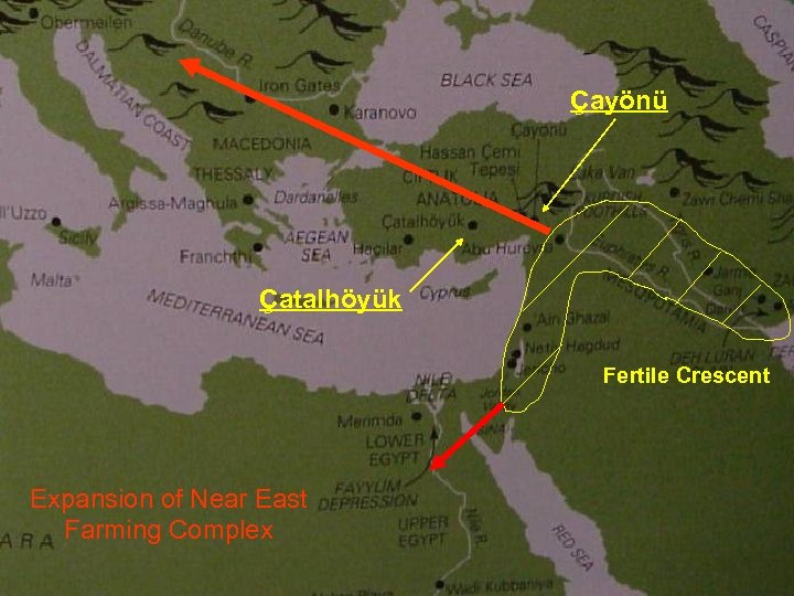 Çayönü Çatalhöyük Fertile Crescent Expansion of Near East Farming Complex