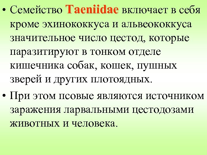 • Семейство Taeniidae включает в себя кроме эхинококкуса и альвеококкуса значительное число цестод,