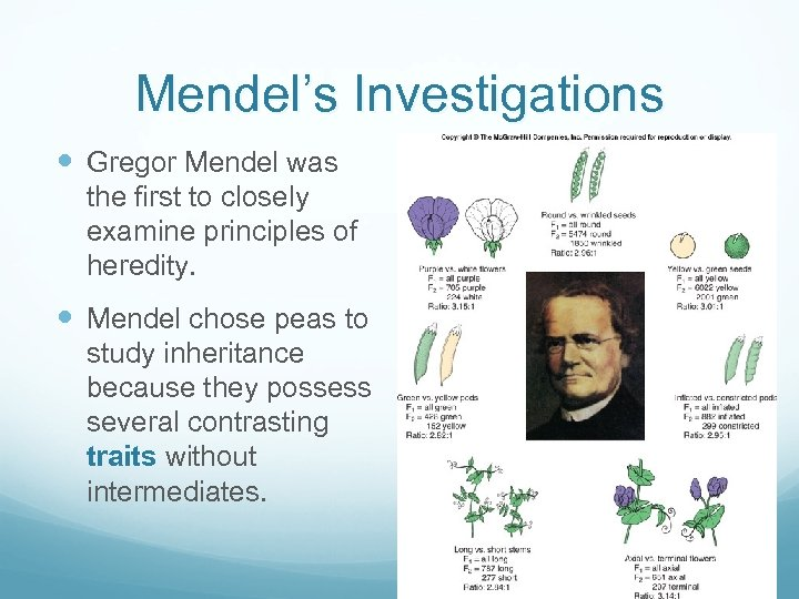 Mendel's Investigations Gregor Mendel was the first to closely examine principles of heredity. Mendel