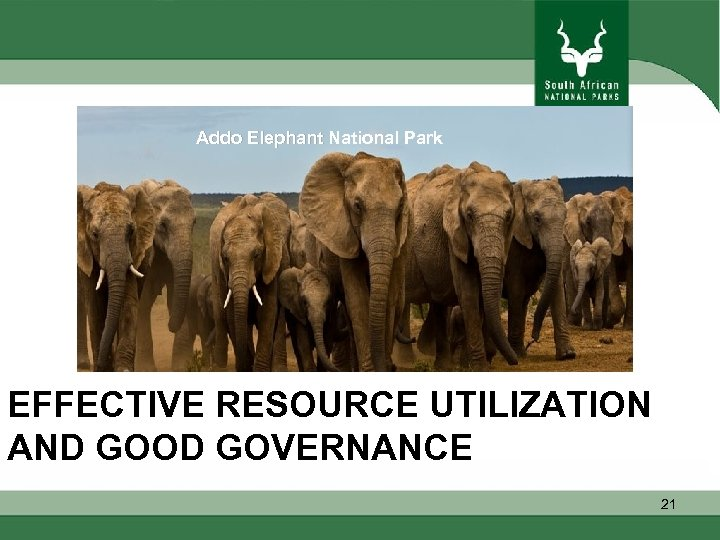 Addo Elephant National Park EFFECTIVE RESOURCE UTILIZATION AND GOOD GOVERNANCE 21