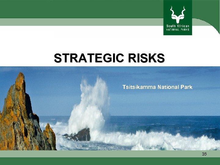 STRATEGIC RISKS Tsitsikamma National Park 35