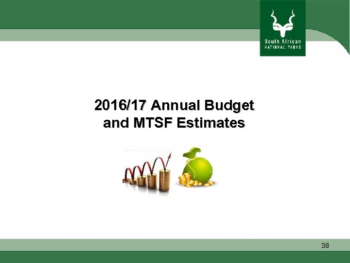2016/17 Annual Budget and MTSF Estimates 38