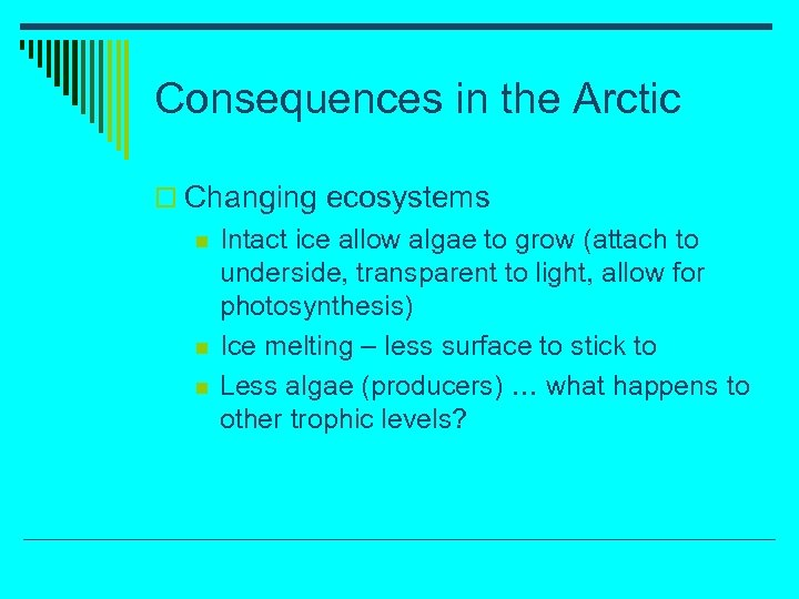 Consequences in the Arctic o Changing ecosystems n n n Intact ice allow algae