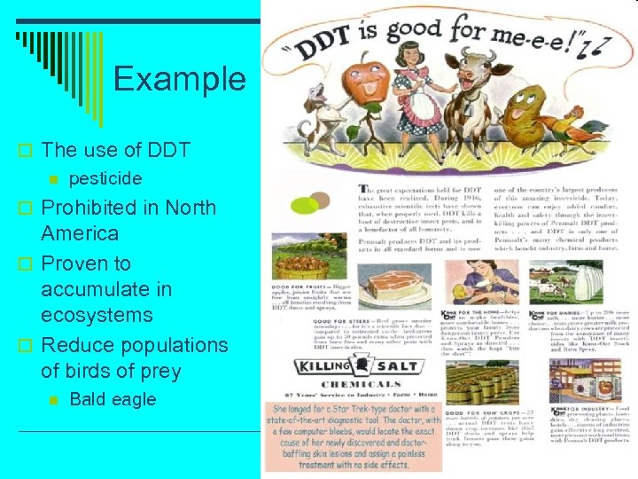 Example o The use of DDT n pesticide o Prohibited in North America o