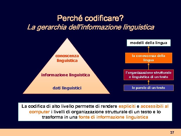 Perché codificare? La gerarchia dell'informazione linguistica modelli della lingua conoscenza linguistica informazione linguistica dati