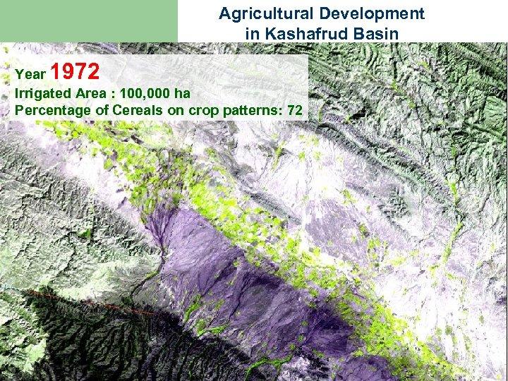 Agricultural Development in Kashafrud Basin 1972 Year Irrigated Area : 100, 000 ha Percentage