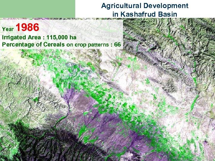 Agricultural Development in Kashafrud Basin Year 1986 Irrigated Area : 115, 000 ha Percentage
