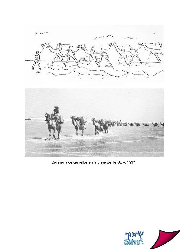 Caravana de camellos en la playa de Tel Aviv, 1937