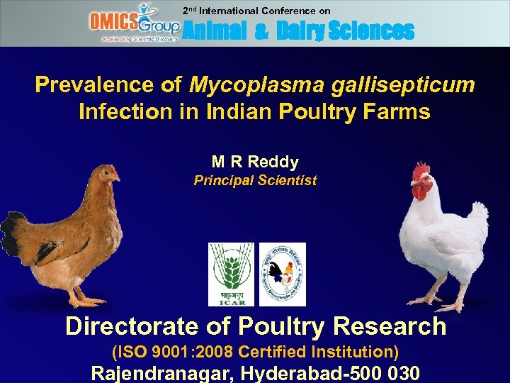 2 nd International Conference on Animal & Dairy Sciences Prevalence of Mycoplasma gallisepticum Infection