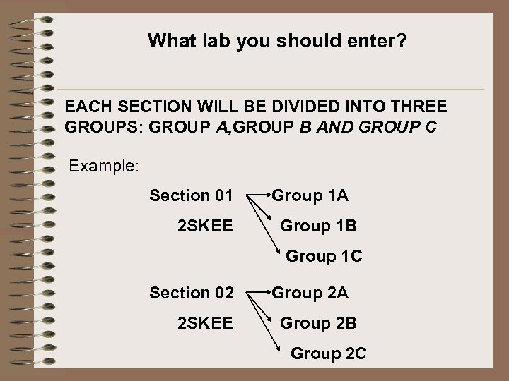 What lab you should enter? EACH SECTION WILL BE DIVIDED INTO THREE GROUPS: GROUP