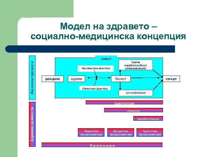 Модел на здравето – социално-медицинска концепция Жизнени процеси живот Трайна нерабостособност (инвалидизация) Неизвестен фактор