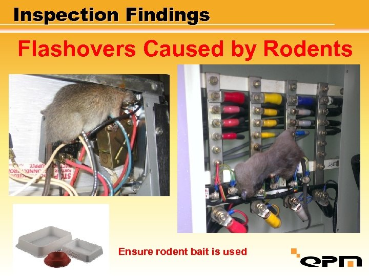 Inspection Findings Flashovers Caused by Rodents Ensure rodent bait is used