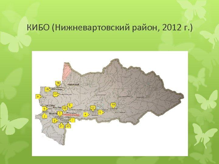 КИБО (Нижневартовский район, 2012 г. )