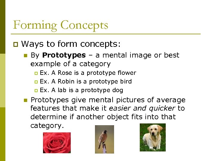 Forming Concepts p Ways to form concepts: n By Prototypes – a mental image