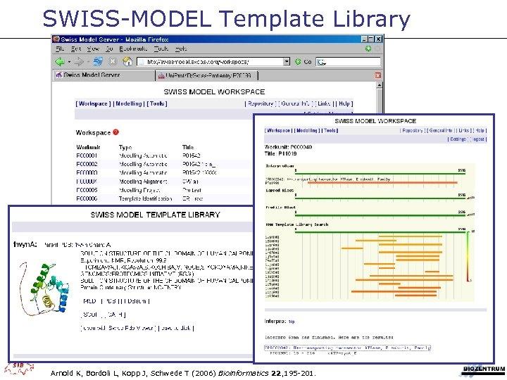 SWISS-MODEL Template Library Arnold K, Bordoli L, Kopp J, Schwede T (2006) Bioinformatics 22,