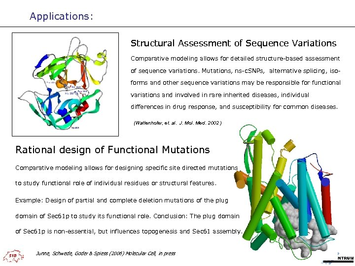 Applications: Structural Assessment of Sequence Variations Comparative modeling allows for detailed structure-based assessment of
