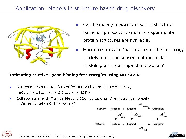 Application: Models in structure based drug discovery n Can homology models be used in