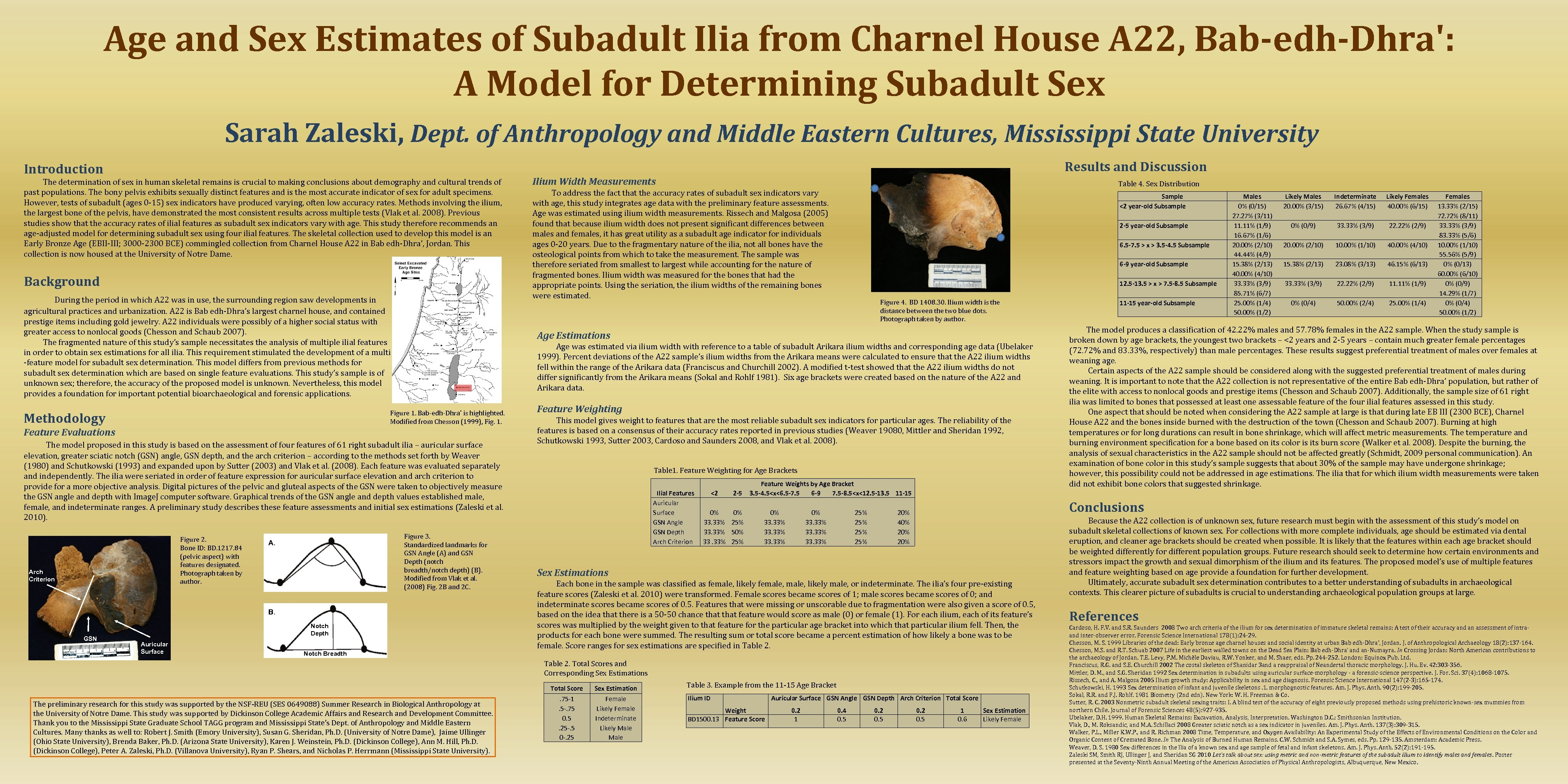 Age and Sex Estimates of Subadult Ilia from Charnel House A 22, Bab-edh-Dhra': A