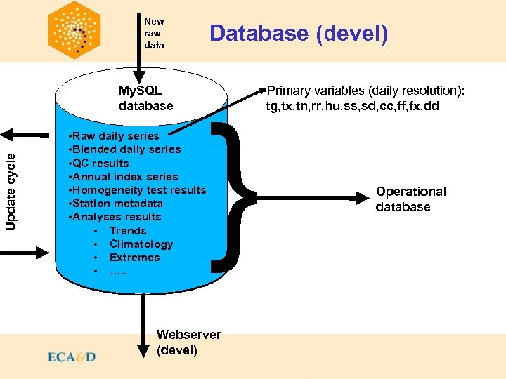 New raw data Contents My. SQL database Update cycle Database (devel) • Raw daily