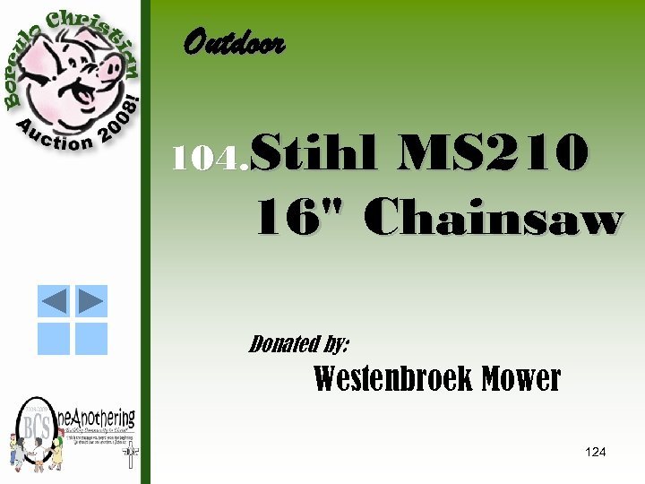 Outdoor 104. Stihl MS 210 16