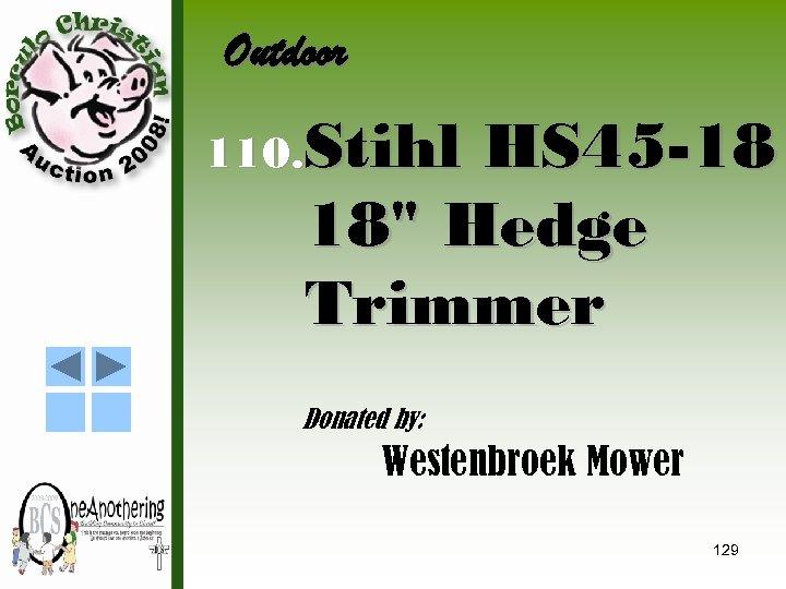 Outdoor 110. Stihl HS 45 -18 18