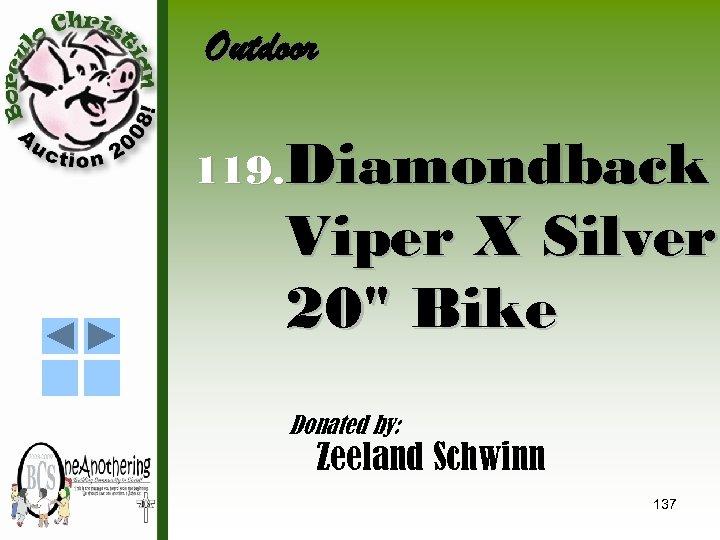 Outdoor 119. Diamondback Viper X Silver 20