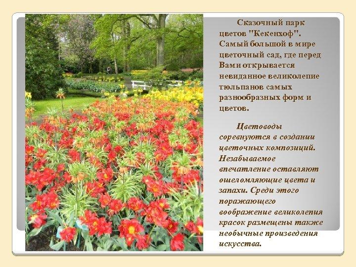 Сказочный парк цветов