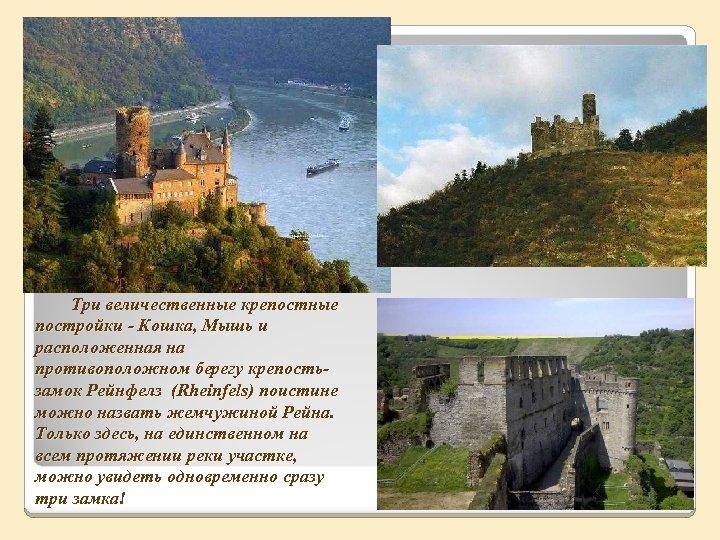 Три величественные крепостные постройки - Кошка, Мышь и расположенная на противоположном берегу крепостьзамок Рейнфелз