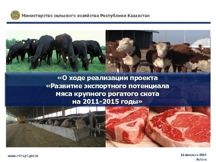 Министерство сельского хозяйства Республики Казахстан «О ходе реализации проекта «Развитие экспортного потенциала мяса крупного