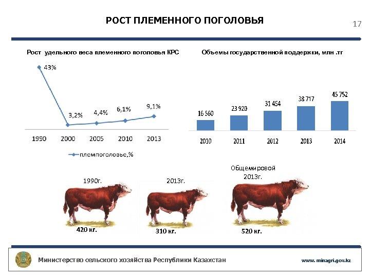 РОСТ ПЛЕМЕННОГО ПОГОЛОВЬЯ Рост удельного веса племенного поголовья КРС 1990 г. 420 кг. 17