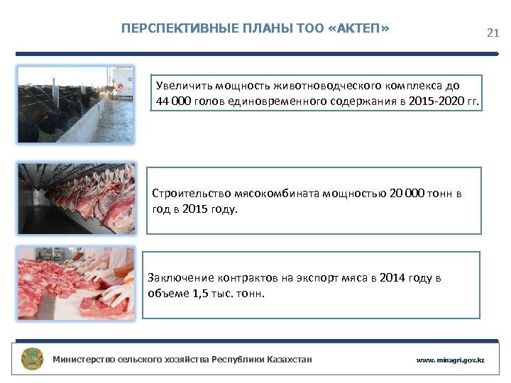ПЕРСПЕКТИВНЫЕ ПЛАНЫ ТОО «АКТЕП» 21 Увеличить мощность животноводческого комплекса до 44 000 голов единовременного