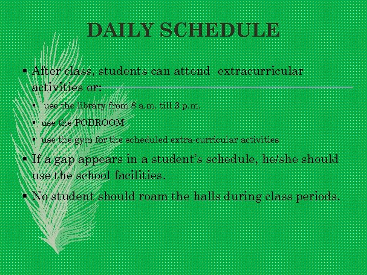 DAILY SCHEDULE § After class, students can attend extracurricular activities or: § use the