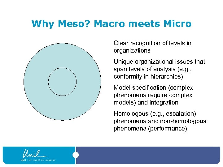 Why Meso? Macro meets Micro Clear recognition of levels in organizations Unique organizational issues