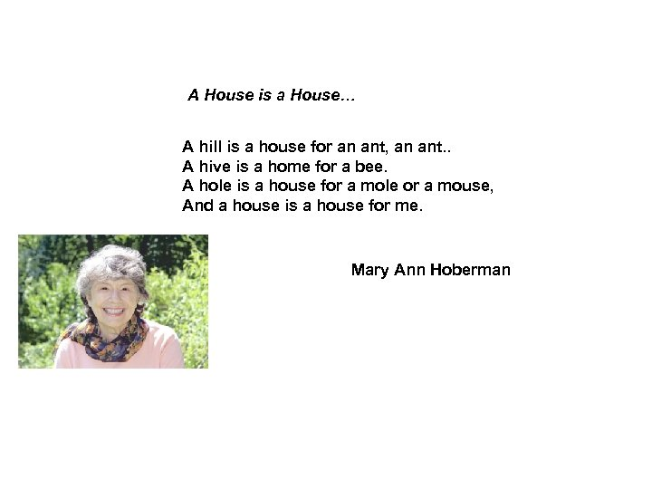 A House is a House… A hill is a house for an ant, an