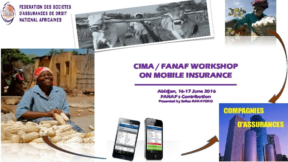 CIMA / FANAF WORKSHOP ON MOBILE INSURANCE -------------------------Abidjan, 16 -17 June 2016 FANAF's Contribution