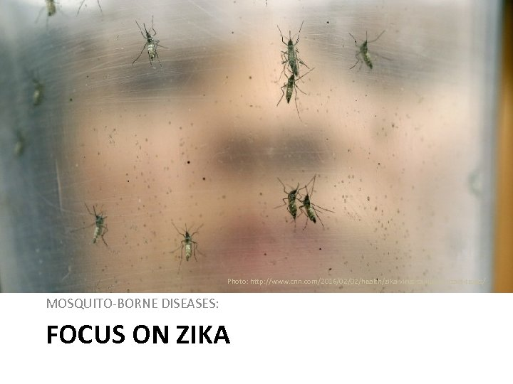 Photo: http: //www. cnn. com/2016/02/02/health/zika-virus-sexual-contact-texas/ MOSQUITO-BORNE DISEASES: FOCUS ON ZIKA