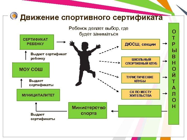 Движение спортивного сертификата Ребенок делает выбор, где будет заниматься СЕРТИФИКАТ РЕБЕНКУ ДЮСШ, секции Выдает