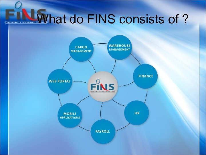What do FINS consists of ?