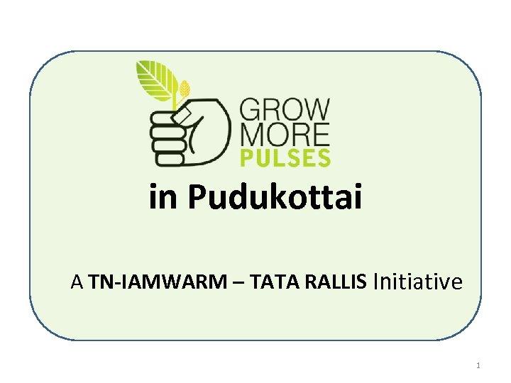 in Pudukottai A TN-IAMWARM – TATA RALLIS Initiative 1