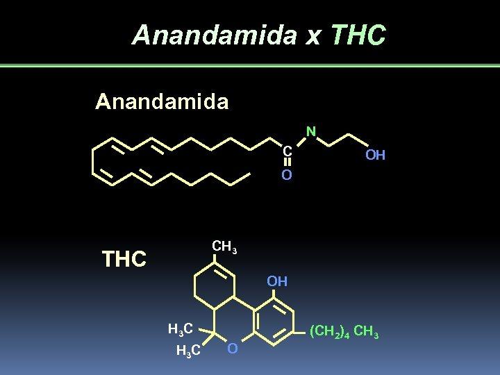 Anandamida x THC Anandamida N C OH O CH 3 THC OH H 3