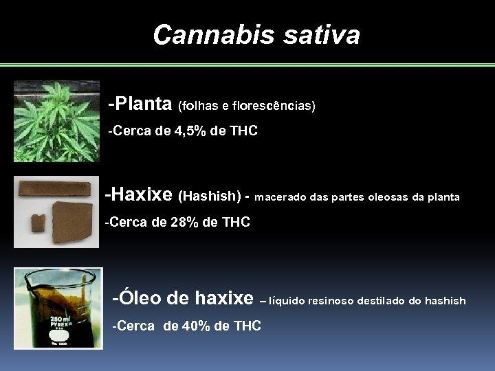 Cannabis sativa -Planta (folhas e florescências) -Cerca de 4, 5% de THC -Haxixe (Hashish)