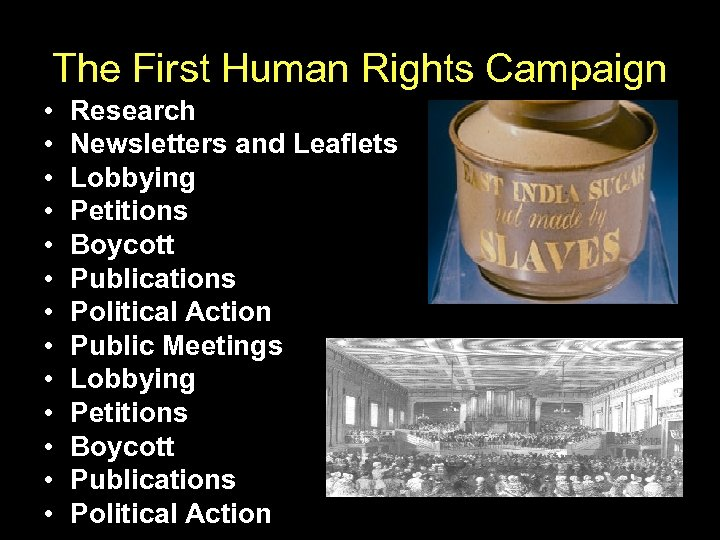 The First Human Rights Campaign • • • • Research Newsletters and Leaflets Lobbying