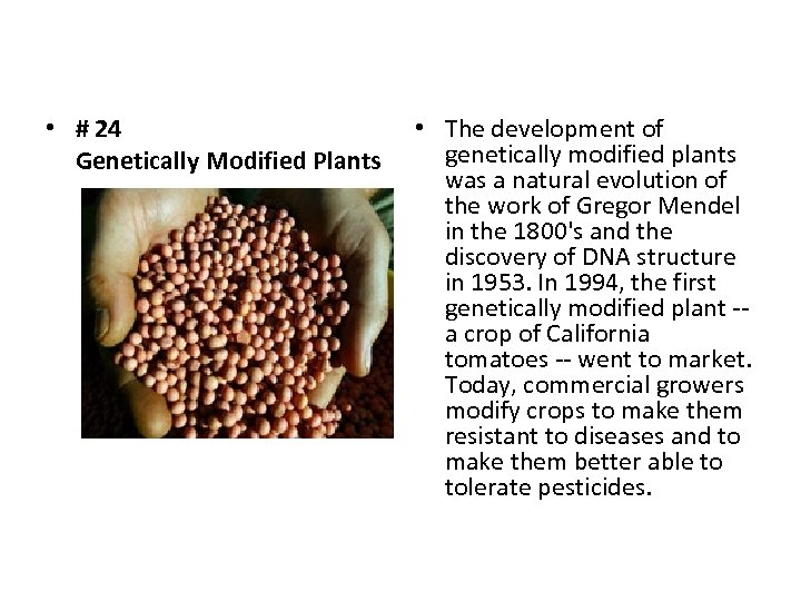 • # 24 Genetically Modified Plants • The development of genetically modified plants