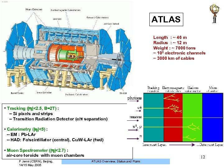 ATLAS Length : ~ 46 m Radius : ~ 12 m Weight : ~