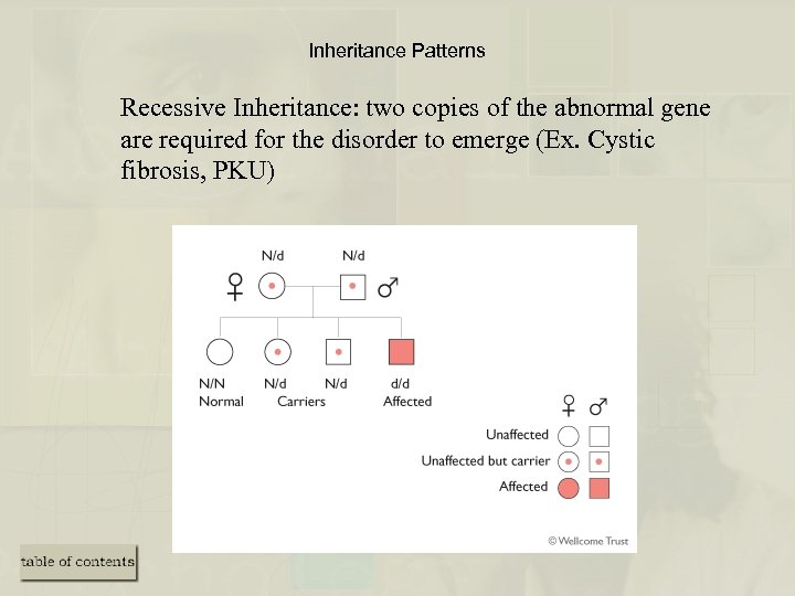 Inheritance Patterns Recessive Inheritance: two copies of the abnormal gene are required for the
