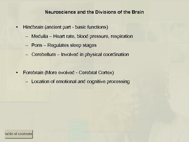 Neuroscience and the Divisions of the Brain • Hindbrain (ancient part - basic functions)