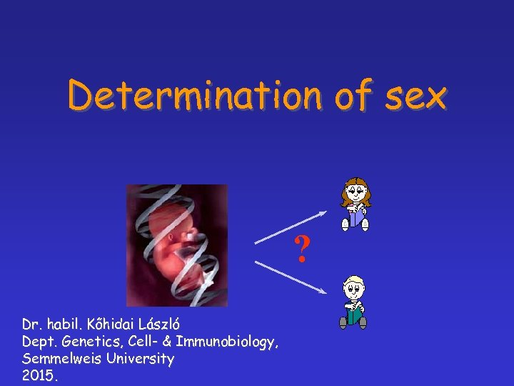 Determination of sex ? Dr. habil. Kőhidai László Dept. Genetics, Cell- & Immunobiology, Semmelweis