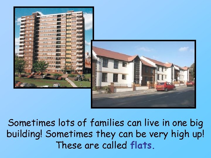 Sometimes lots of families can live in one big building! Sometimes they can be