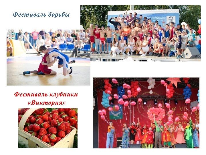 Фестиваль борьбы Фестиваль клубники «Виктория»