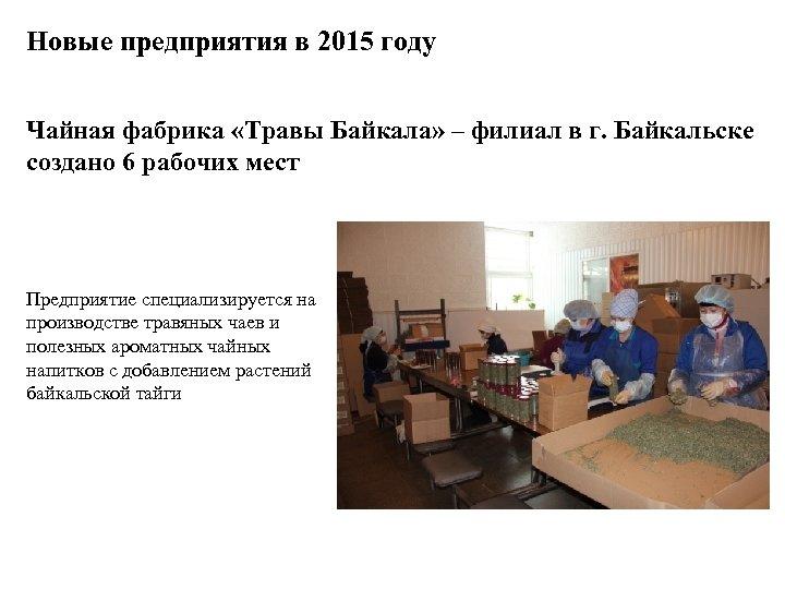 Новые предприятия в 2015 году Чайная фабрика «Травы Байкала» – филиал в г. Байкальске